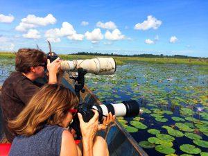 Mabamba Swamp Wetland Bay