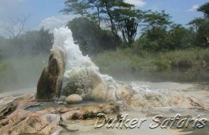 3 Days Semuliki National Park Safari